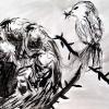 alexandras-bird_400